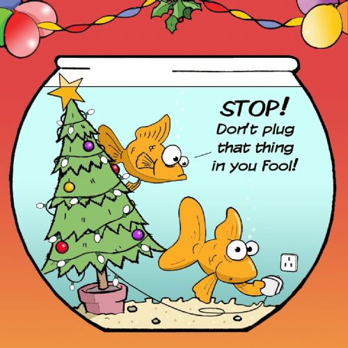 TW169 – Funny Christmas Card Fish Fool